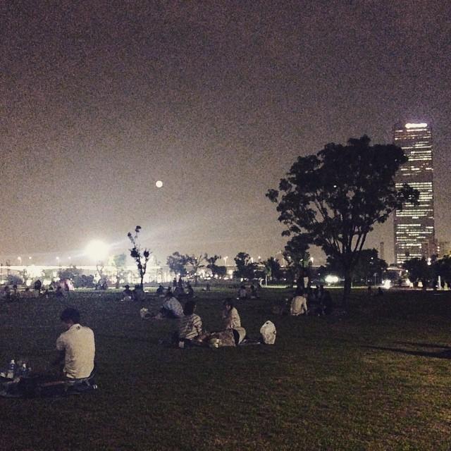 今天是设么大日子?#Seoul #Hangang #Park